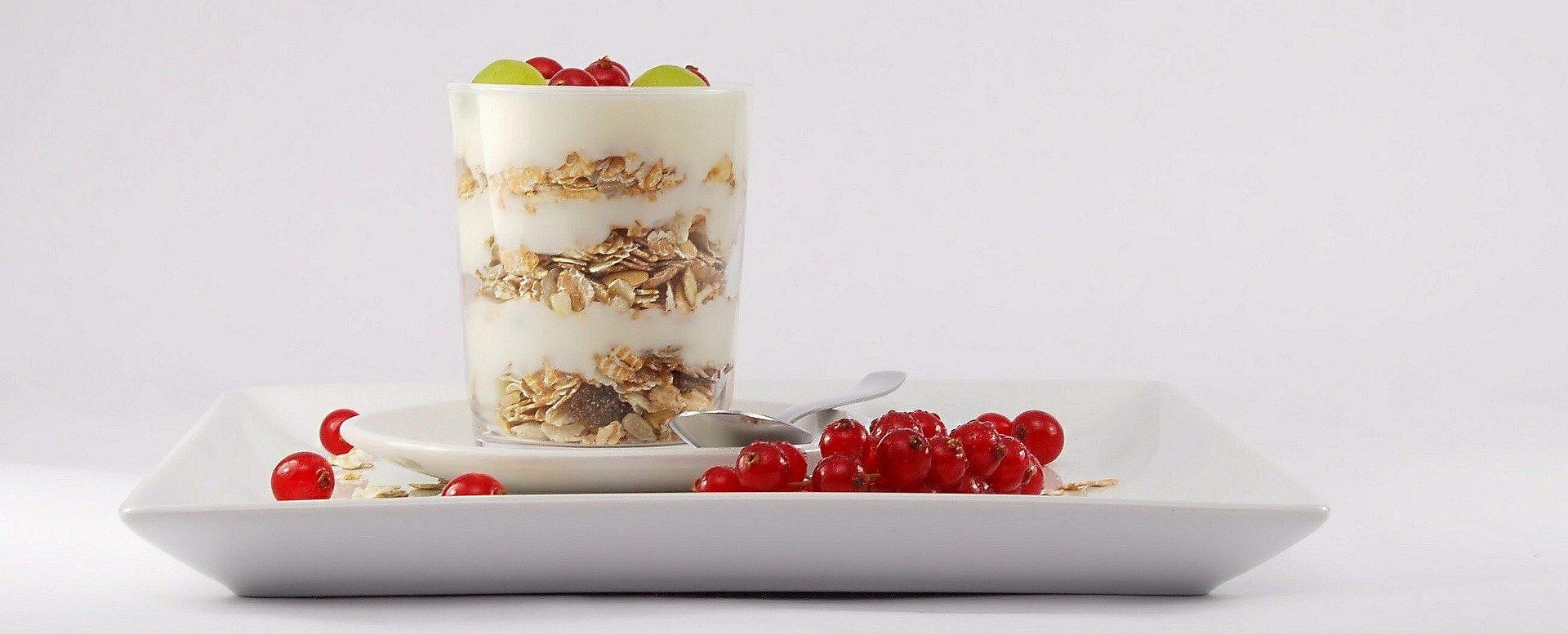 Recette yaourt lait soja